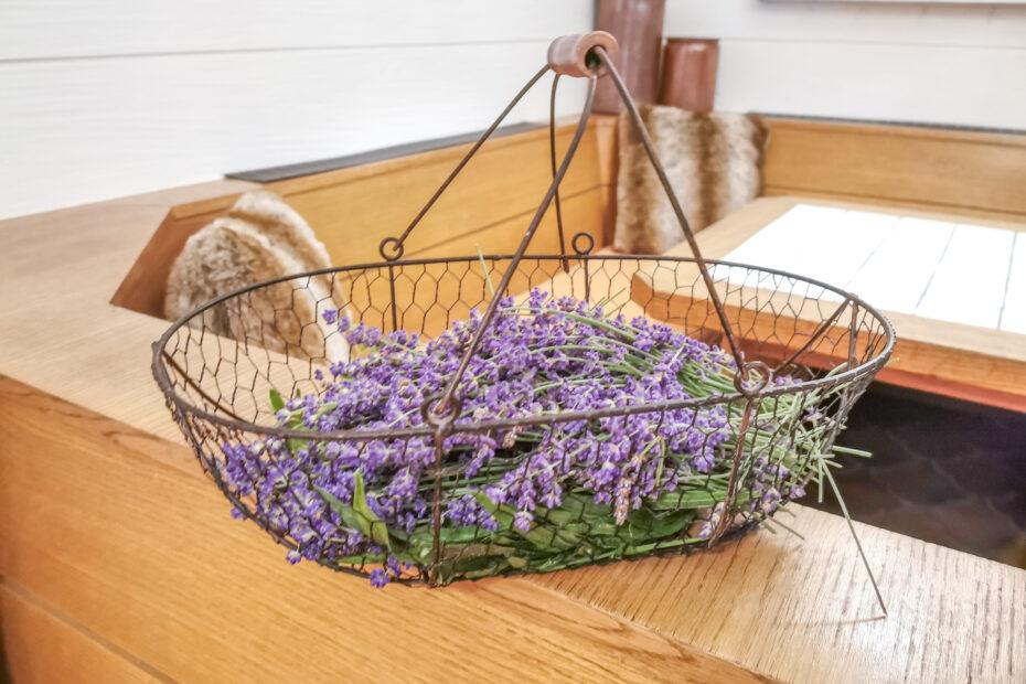 gruenesherz.blog   gesammelter Lavendel